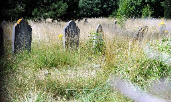 An overgrown Broadwater Cemetery in Worthing