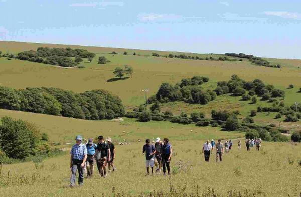 More freedom to roam the South Downs