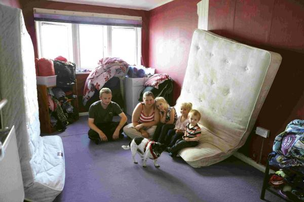 Father says block of flats is riddled with bugs