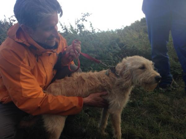 Dog trapped for over 26 hours after running off cliff