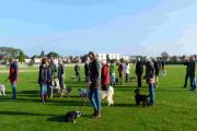 The Manor Sports Ground is popular with dog walkers