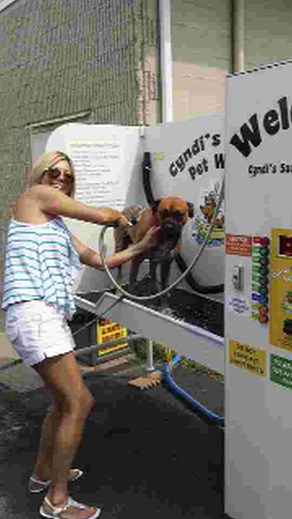 A woman takes her pet to the new dog wash facility that has been a hit in the USA