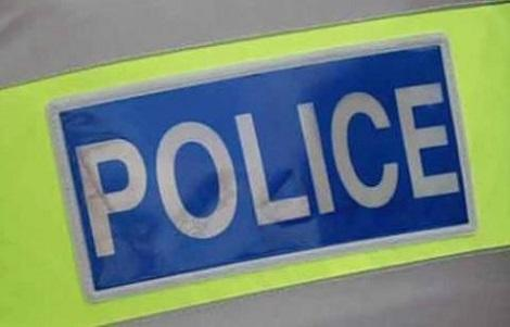 Two Sussex Police officers were suspended as a result