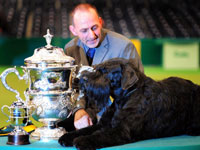 Philippe, a Giant Schnauzer with owner Kevin Cullen