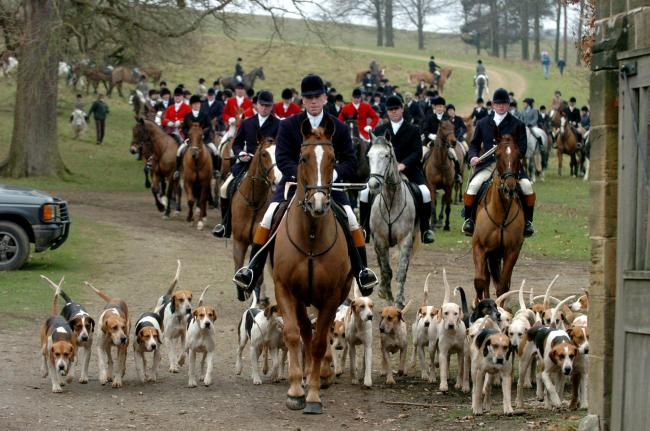Members of the Chiddingfold, Leconfield and Cowdray Hunt