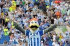 Brighton and Hove Albion v Blackburn Rovers Sky Bet Championship Match at The Amex - Gully  Picture: Liz Finlayson