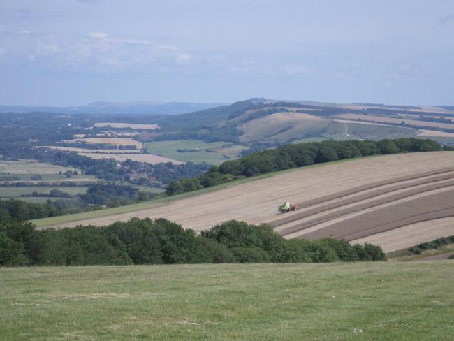 Campaigners are looking to protect the South Downs