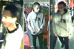 Images of the suspect caught on CCTV from the N25 night bus.