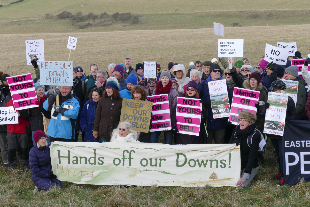 Campaigners have been fighting the downland sale for months