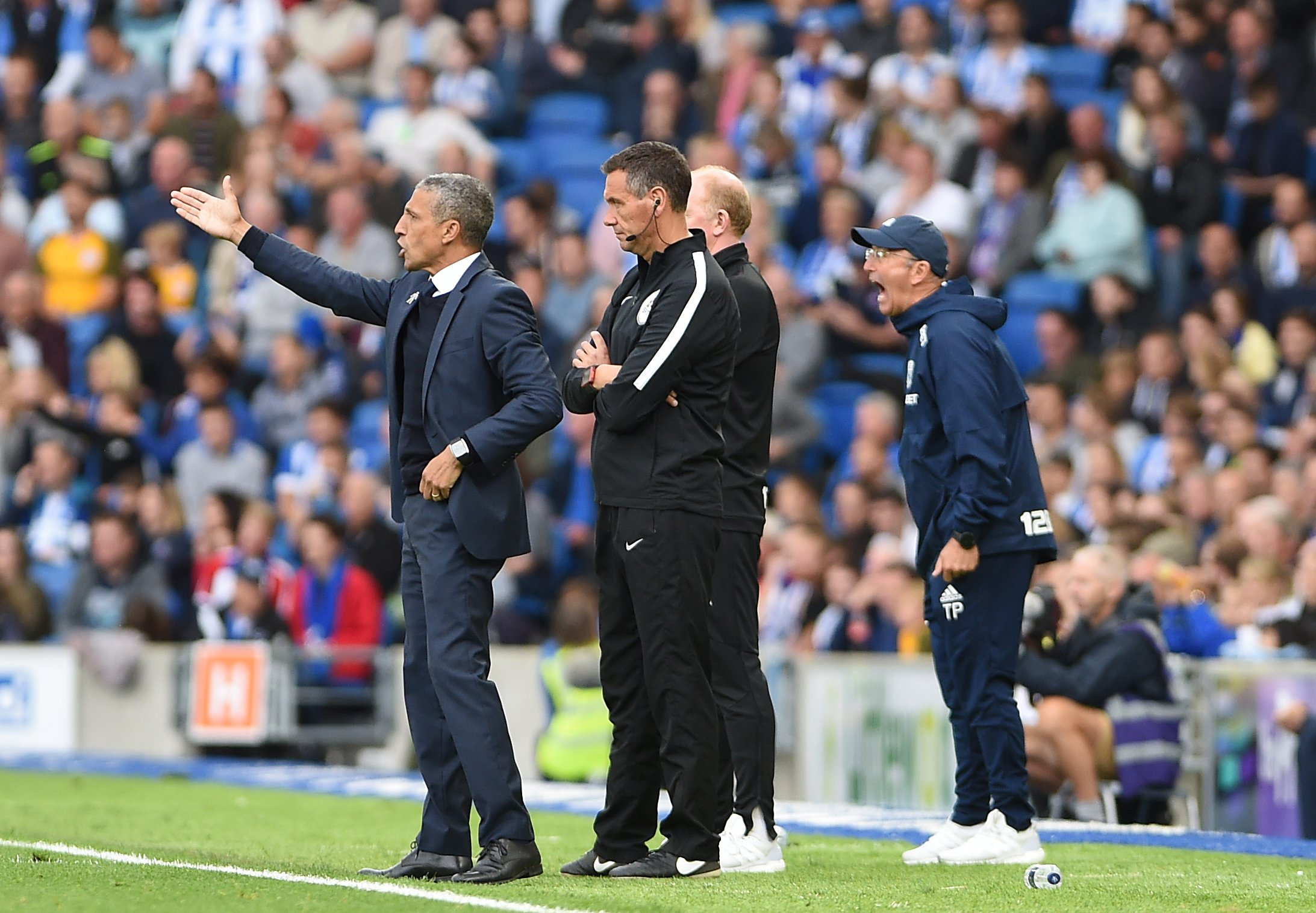 Chris Hughton masterminded Albion's victory over West Brom. Picture Liz Finlayson