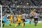 Shane Duffy goes close to scoring for Albion at Newcastle. Picture Richard Parkes
