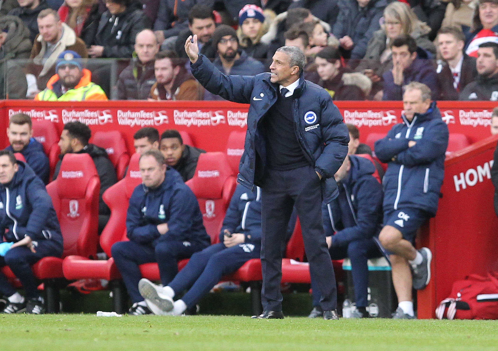 Memories of promotion agony can help save Albion from the drop says boss Hughton