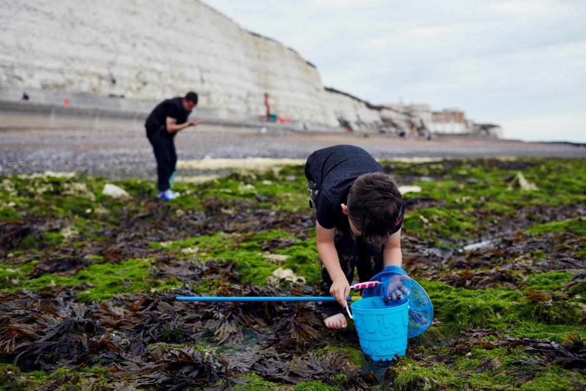 Αποτέλεσμα εικόνας για Brighton and Lewes Downs to receive nearly £500,000 to boost sustainable tourism
