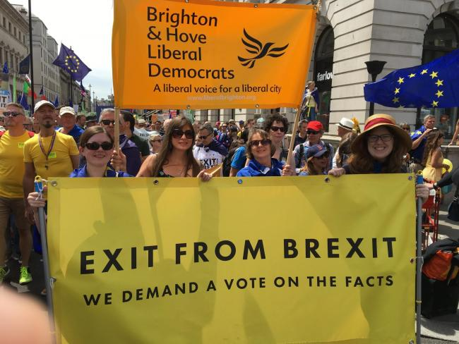 Brighton and Hove Liberal Democrats at March for a People's Vote in London on 23rd June