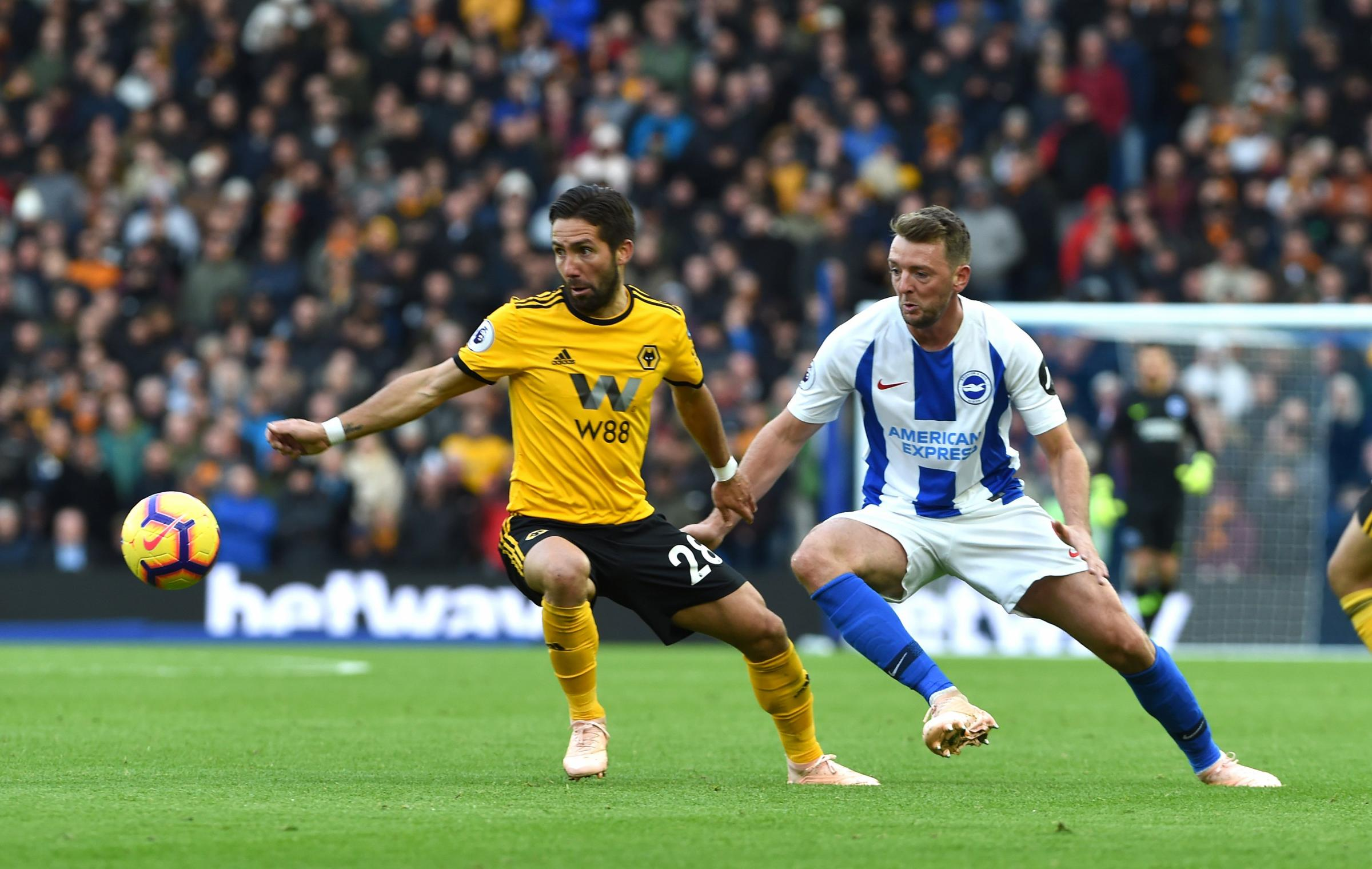 Dale Stephens remains a key man for Albion