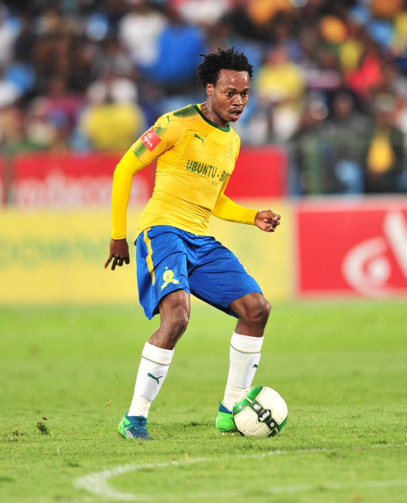 Widespread interest in Albion's South Africa star