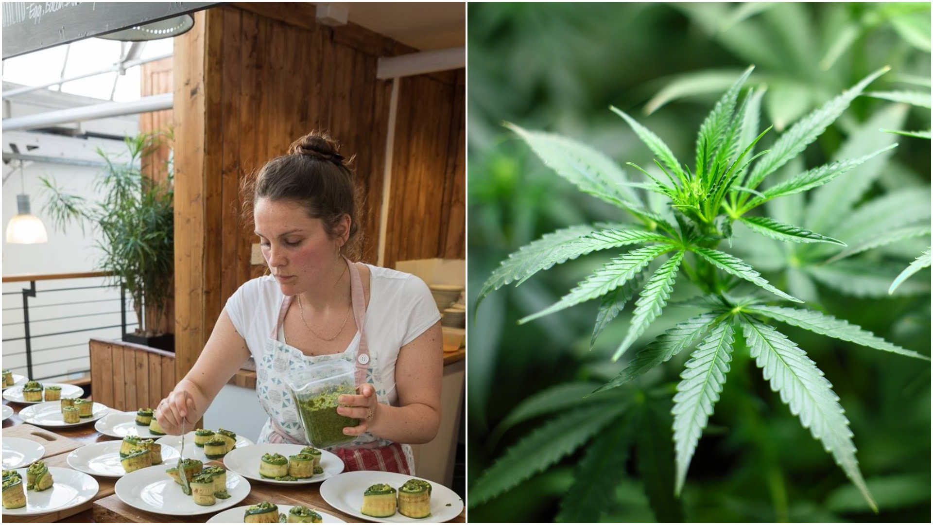UK's first cannabis infused restaurant to open in Brighton | The Argus