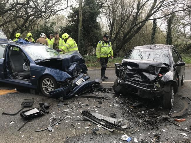 Dog rescued unharmed from horror car crash | The Argus
