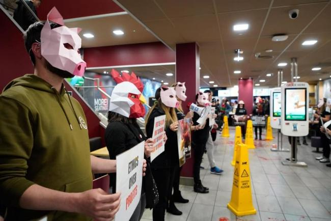 Protesters from DxE Brighton stormed McDonald's in London Road